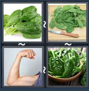 4 Pics 1 Word Level 1767 Answers