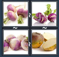 4 Pics 1 Word Level 1774 Answers