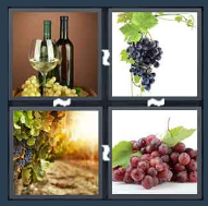 4 Pics 1 Word Level 1909 Answers