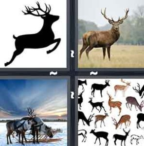 4 Pics 1 Word Level 2185 Answers