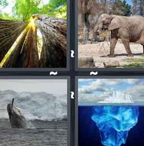 4 Pics 1 Word Level 2243 Answers