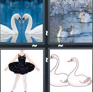 4 Pics 1 Word Level 2363 Answers