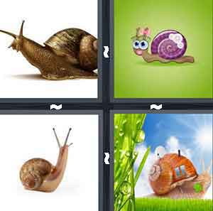 4 Pics 1 Word Level 2661 Answers