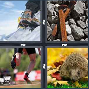 4 Pics 1 Word Level 3249 Answers