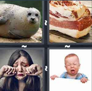 4 Pics 1 Word Level 3277 Answers