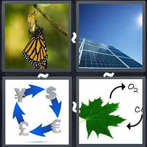 4 Pics 1 Word Level 469 Answers