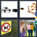 4 Pics 1 Word Level 4811 Answers