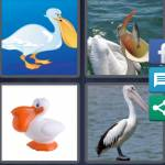 4 Pics 1 Word Level 4877 Answers