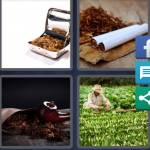 4 Pics 1 Word Level 4900 Answers