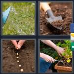 4 Pics 1 Word Level 5176 Answers