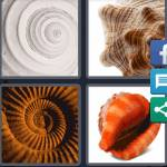 4 Pics 1 Word Level 5321 Answers
