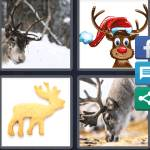 4 Pics 1 Word Level 5339 Answers