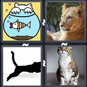 4 Pics 1 Word Level 551 Answers