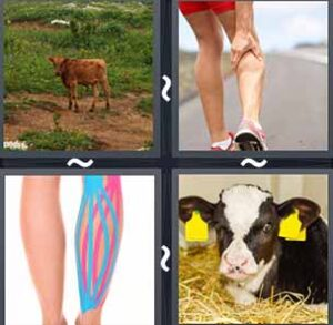 4 Pics 1 word Level 1168 Answers