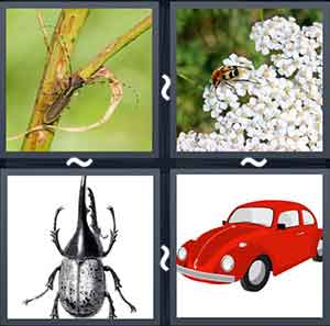 4 Pics 1 word Level 1221 Answers