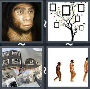 4 Pics 1 word Level 1240 Answers