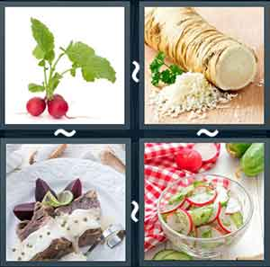 4 Pics 1 word Level 1243 Answers