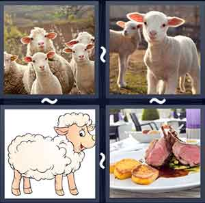 4 Pics 1 word Level 1285 Answers