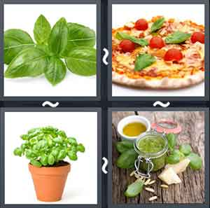 4 Pics 1 word Level 1409 Answers