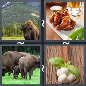 4 Pics 1 word Level 1423 Answers