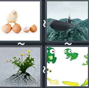4 Pics 1 word Level 637 Answers