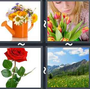 4 Pics 1 word Level 641 Answers