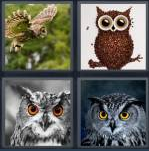 4 Pics 1 Word Level 3573 Answers