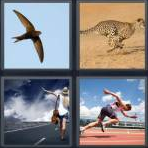 4 Pics 1 Word Level 3992 Answers