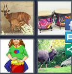 4 Pics 1 Word Level 4051 Answers