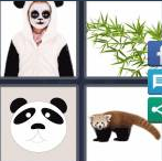 4 Pics 1 Word Level 4135 Answers