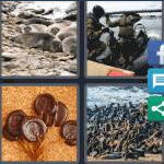4 Pics 1 Word Level 4204 Answers