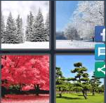 4 Pics 1 Word Level 4215 Answers