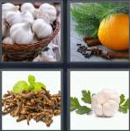 4 Pics 1 Word Level 4234 Answers