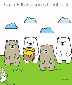 Brain Test One of these bears Answers Puzzle