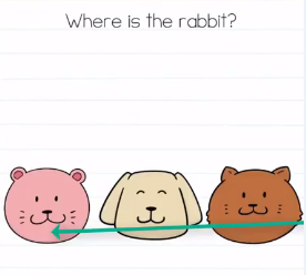 Brain Test Where is the rabbit Answers Puzzle