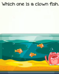 Braindom 2 Level 290 Which one is a clown fish Answers Puzzle