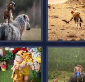 4 Pics 1 Word May 15 2021 Answers Puzzle