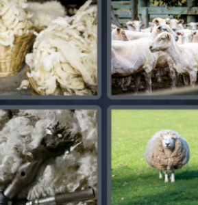 4 Pics 1 Word May 20 2021 Answers Puzzle