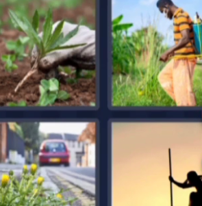 4 Pics 1 Word May 26 2021 Answers Puzzle