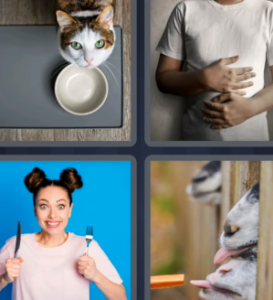 4 Pics 1 Word May 28 2021 Answers Puzzle