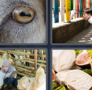 4 Pics 1 Word May 9 2021 Answers Puzzle