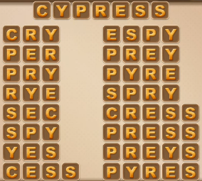 Word Cookies May 30 2021 Answers Puzzle