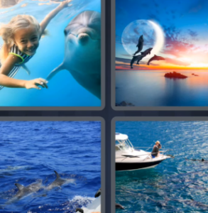 4 Pics 1 Word June 2 2021 Answers Puzzle