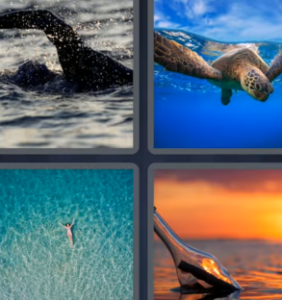 4 Pics 1 Word June 5 2021 Answers Puzzle