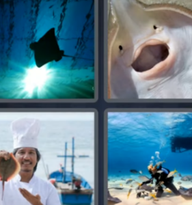 4 Pics 1 Word June 8 2021 Answers Puzzle