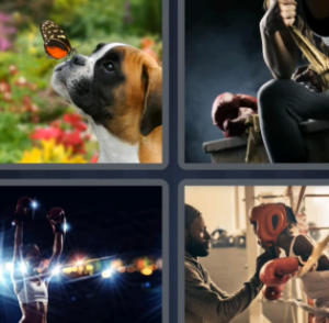 4 Pics 1 Word July 15 2021 Answers Puzzle